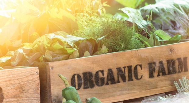 Sklep internetowy Organic Farma Zdrowia wystrzelił. Sieć inwestuje w nowy magazyn
