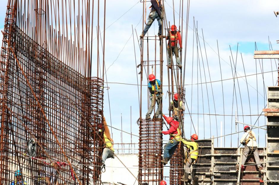 MR o budowie przy Łosiowych Błotach: niedopuszczalna sytuacja