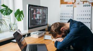 Polacy najliczniejszą grupą pracującą w biurach