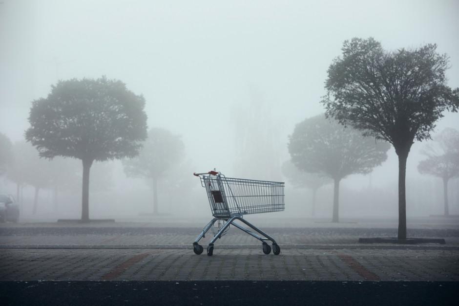 Handel w cieniu pandemii - PropertyNews.pl podsumowuje najważniejsze wydarzenia w sektorze centrów handlowych w ostatnim roku