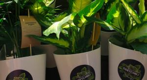 Zielona akcja w biurowcach. GTC promuje proekologiczne nawyki