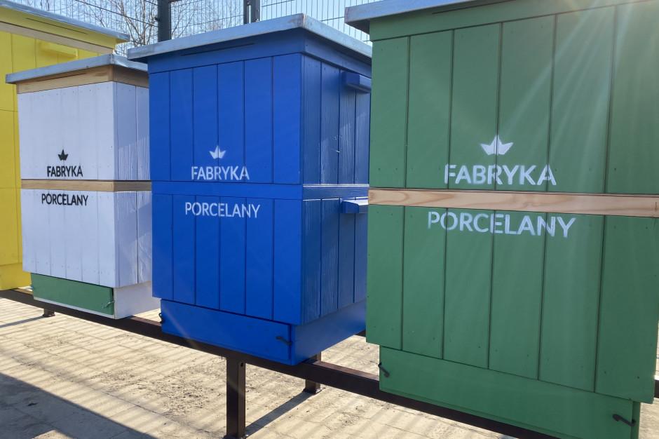 Pszczoły zamieszkały na terenie kompleksu Fabryki Porcelany w Katowicach