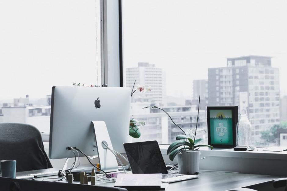 Biura dadzą się ponieść fali elastyczności
