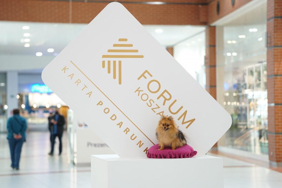 Forum Koszalin jako pierwsze z psimi ambasadorami
