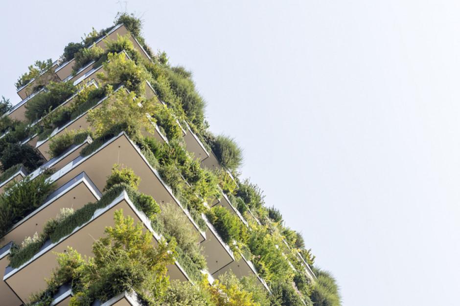 Zielone umowy najmu kluczem do zrównoważonego rozwoju