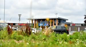 EPP zamieniło trawniki przy centrach handlowych na łąki kwietne