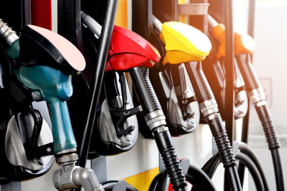 Stacje paliw zmienią się w centra handlowo-usługowe?